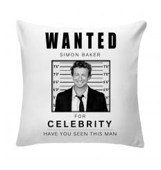 Wanted Simon Baker